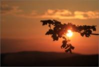 <p>Šluknovsko -  západ slunce na Knížecí</p>